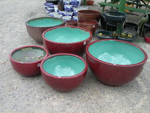 coloured pots